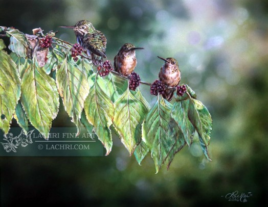 Hummingbirds in colored pencil over an airbrushed background