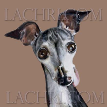 Oil over acrylic Italian Greyhound painting