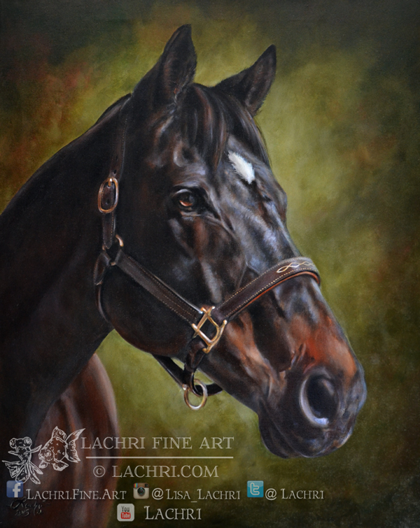 custom horse oil painting