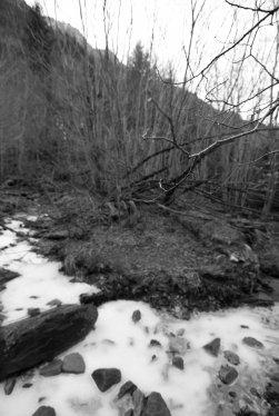 El movimiento estático de la rama y el agua
