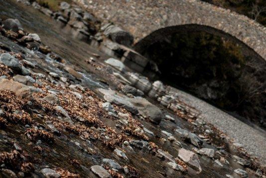 Hacia el curso natural del río