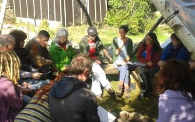 Eco classroom update – week 2