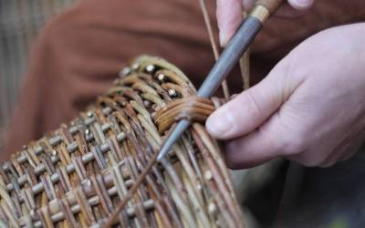 Willow basket making – 12 August 2017