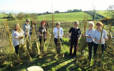 Woodworking and willow – spring courses