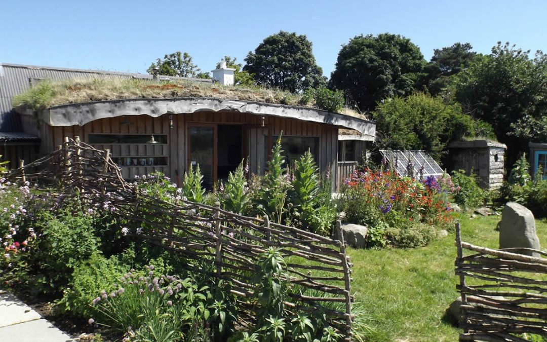 A taste of Lackan Cottage Farm permaculture smallholding