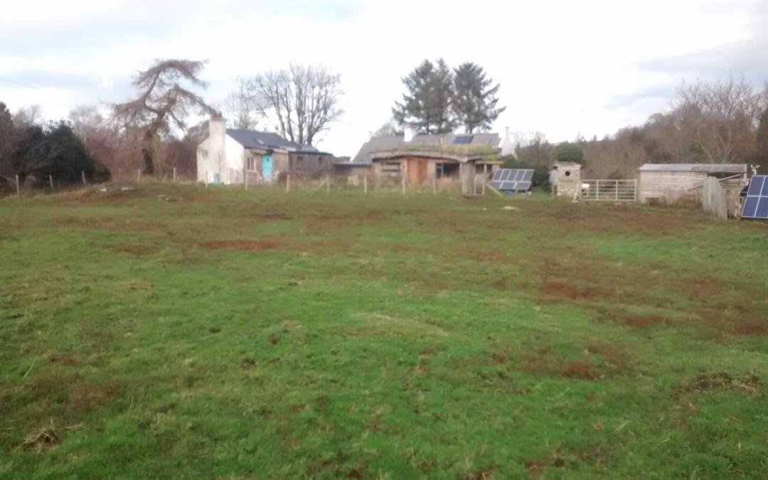 Managing horses on a small acreage