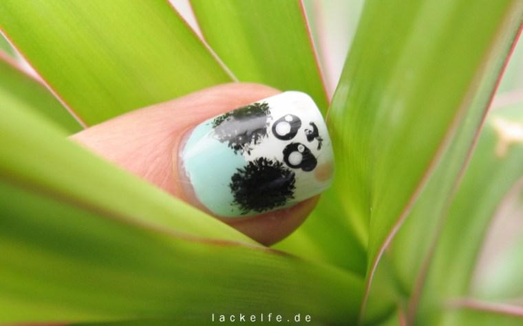 Panda_6_lackelfe