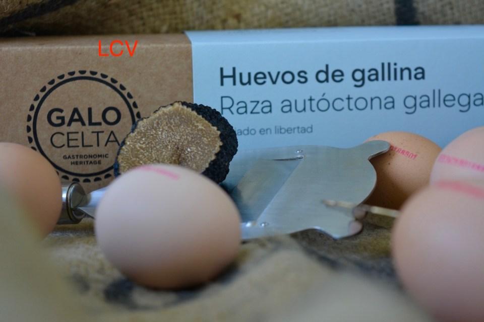 huevo-galo-celta-y-trufa-1