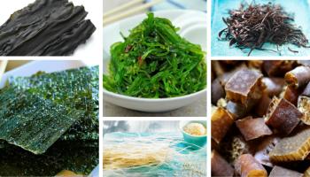 Propiedades y beneficios de las algas marinas