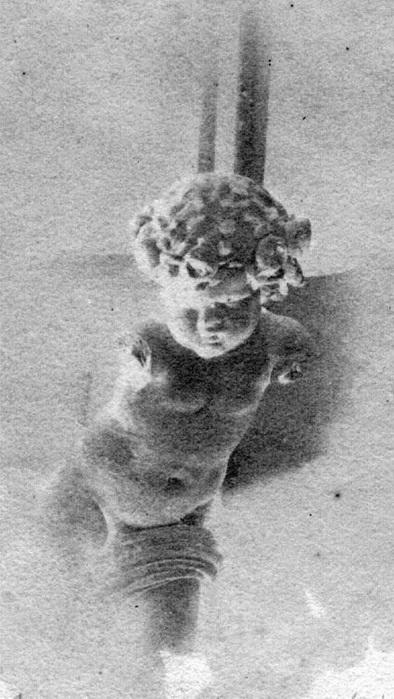 cupidon Szathmari