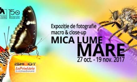 Mica lume Mare – Expozitie de fotografie macro & close-up