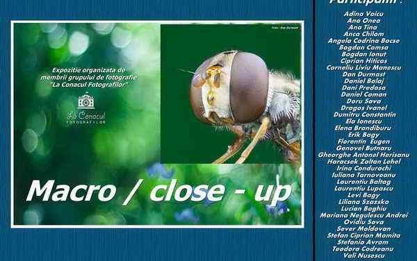 Expozitie de fotografie Macro / Close-up