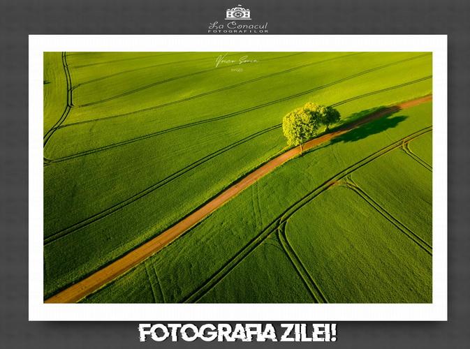 21 de Fotografii realizate de 21 fotografi romani!