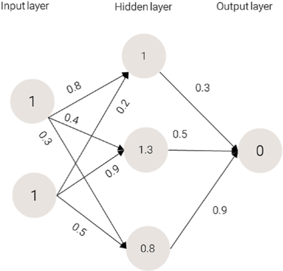 Values for the hidden layer in Machine Learning