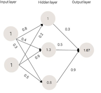 The output value of the network in Machine Learning