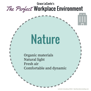 workplace, nature, natural, perfect workplace, work environment, workplace environment, perfect company, strategic risk, strategic plan