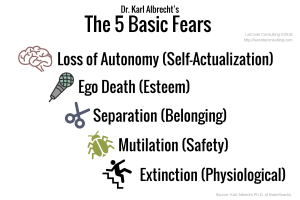 basic fears, types of fears, extinction, physiological, mutilation, safety, ego death, esteem, separation, belonging, loss of autonomy, self actualization