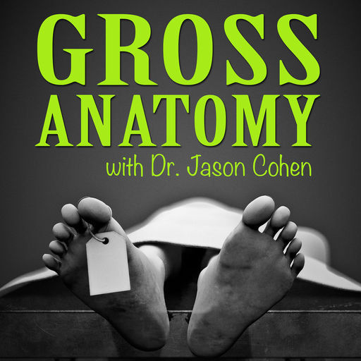 Gross Anatomy Podcast, Gross Anatomy with Dr Jason Cohen, Dr Jason Cohen, thyroid cancer, Chernobyl, Chernobyl documentary, Chernobyl disaster, nuclear fallout, nuclear disaster, USSR, risk management