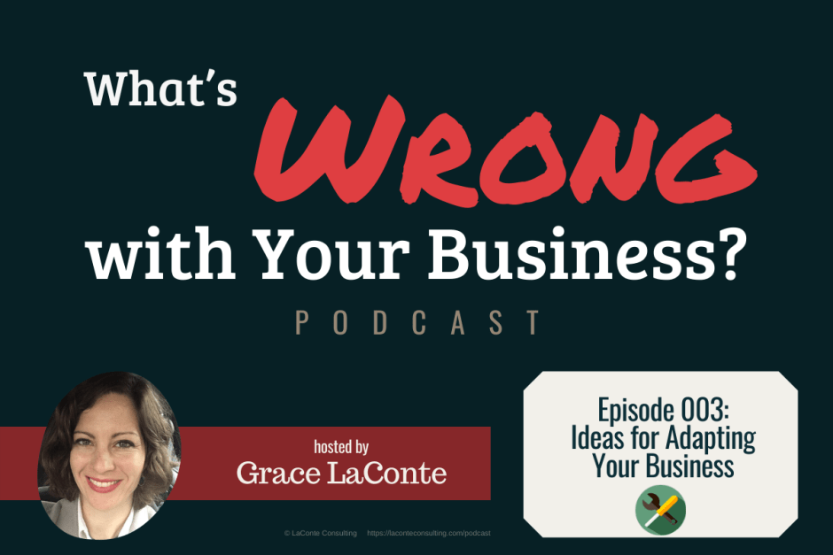 """What's Wrong with Your Business"" podcast with Grace LaConte Episode 3, Ideas for Adapting Your Business"
