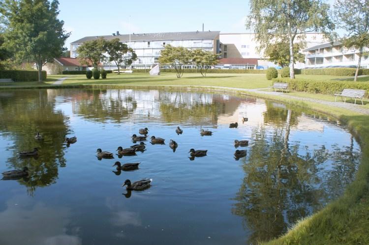 viborg parc