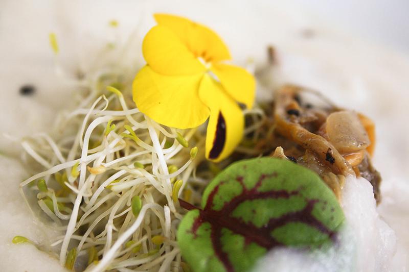 restaurant gastrnomique vegan paris décorisation plat