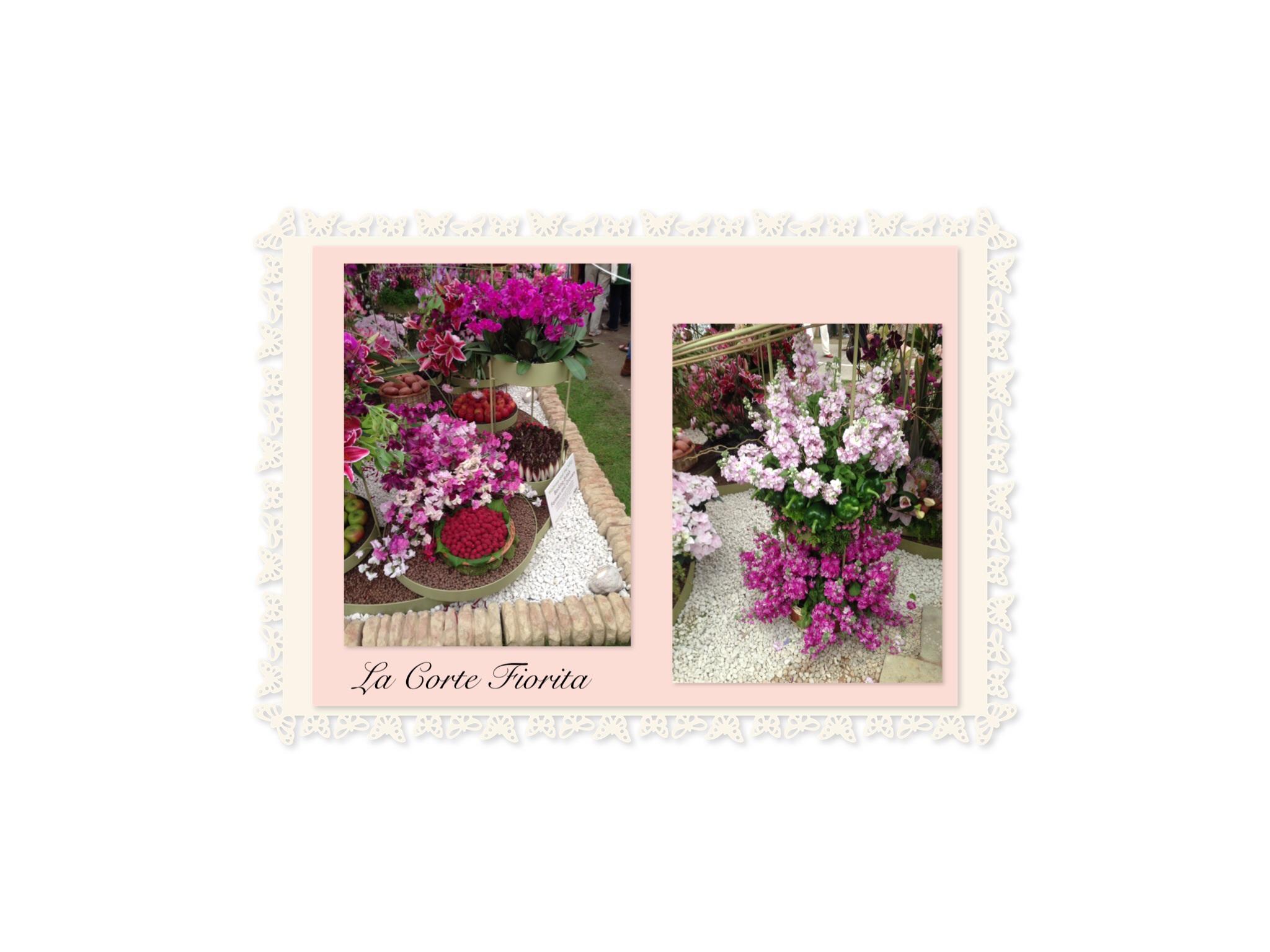 Espressioni in fiore archivi   pagina 2 di 3   la corte fiorita