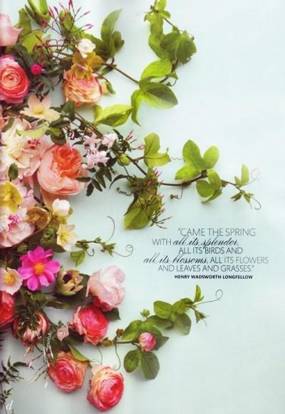 Spring, Blossom, Poetry