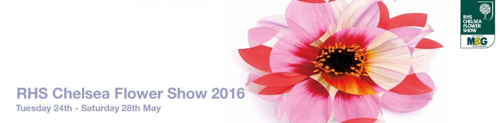 Chelsea Flower Show Logo