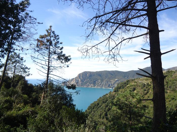 Bosques mediterráneos de Cinque Terre