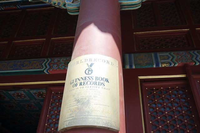 El Buda más grande del mundo, según el libro Guinness de los Records