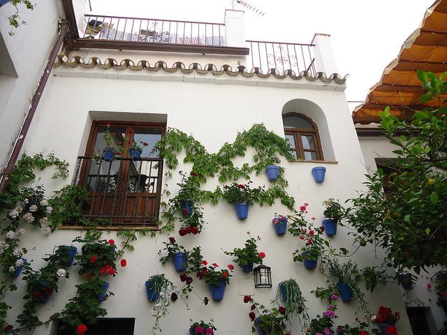 Festival de los Patios, Córdoba