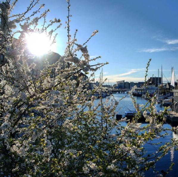 Primavera en Copenhague