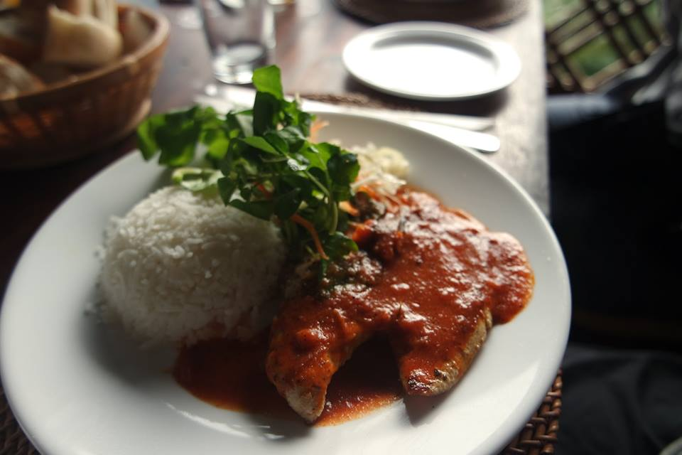 Arroz con pollo en salsa