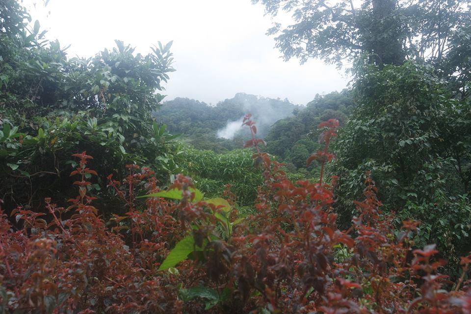 Distrito de Chiriquí, Cordillera Central de Panamá
