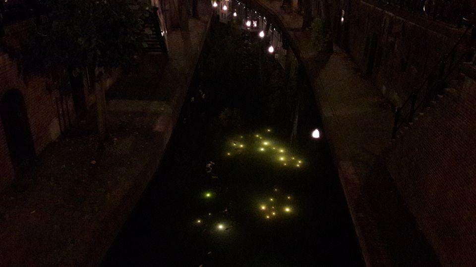luces-en-los-canales-tour-nocturno-de-utrecht