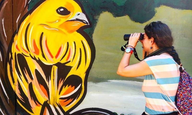 Avistamiento de aves en Cali, Colombia