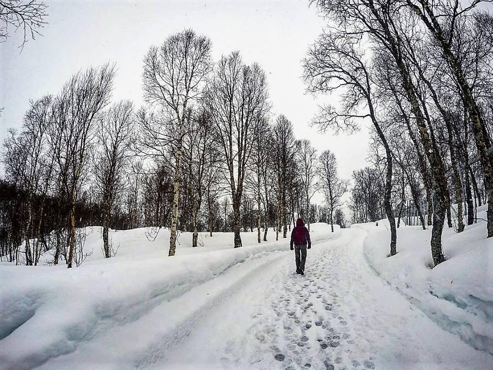 Caminos de nieve, Narvik