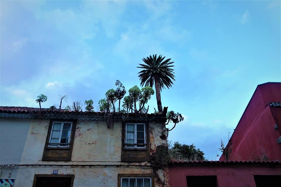 Casas de La Laguna