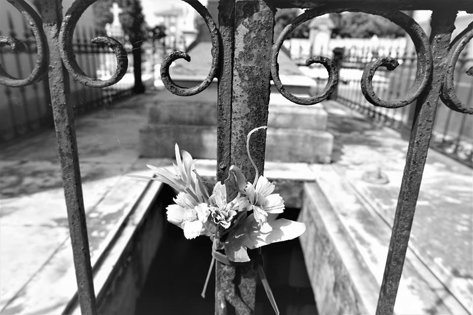 Flores secas, cementerio de La Carriona, Avilés