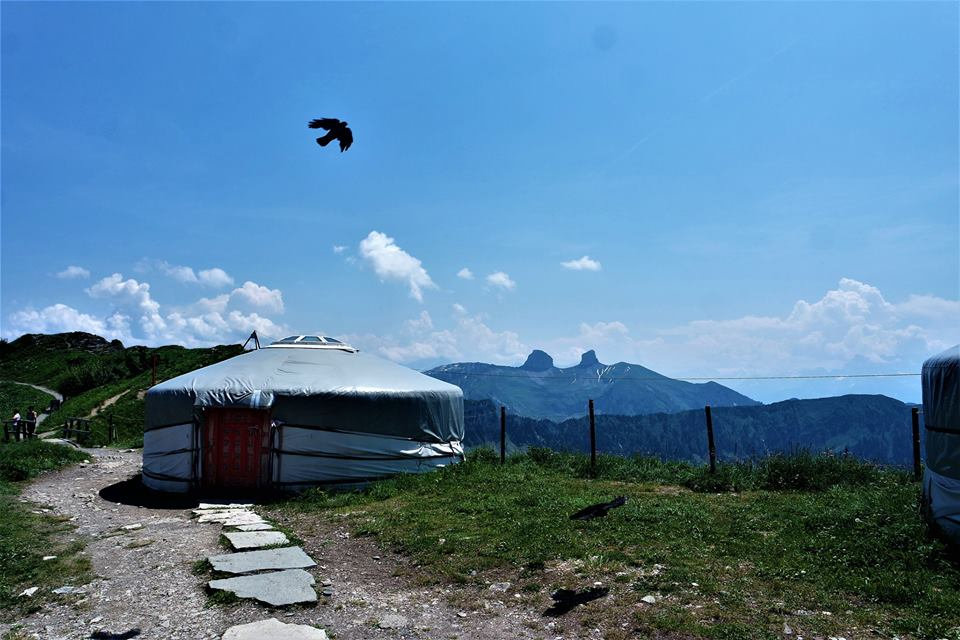 Rochers de Naye, yurta mongola