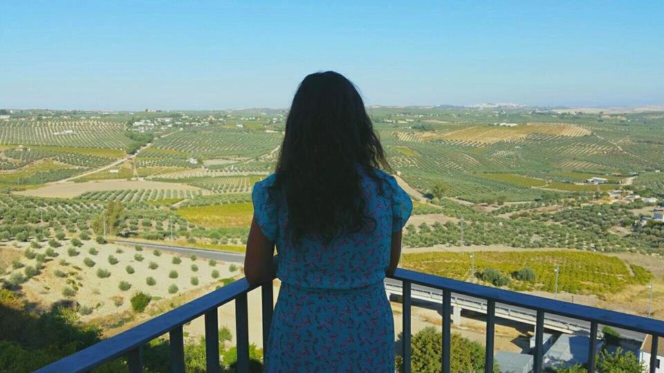 Vistas de la campiña montillana desde el balcón de la Escuchuela.