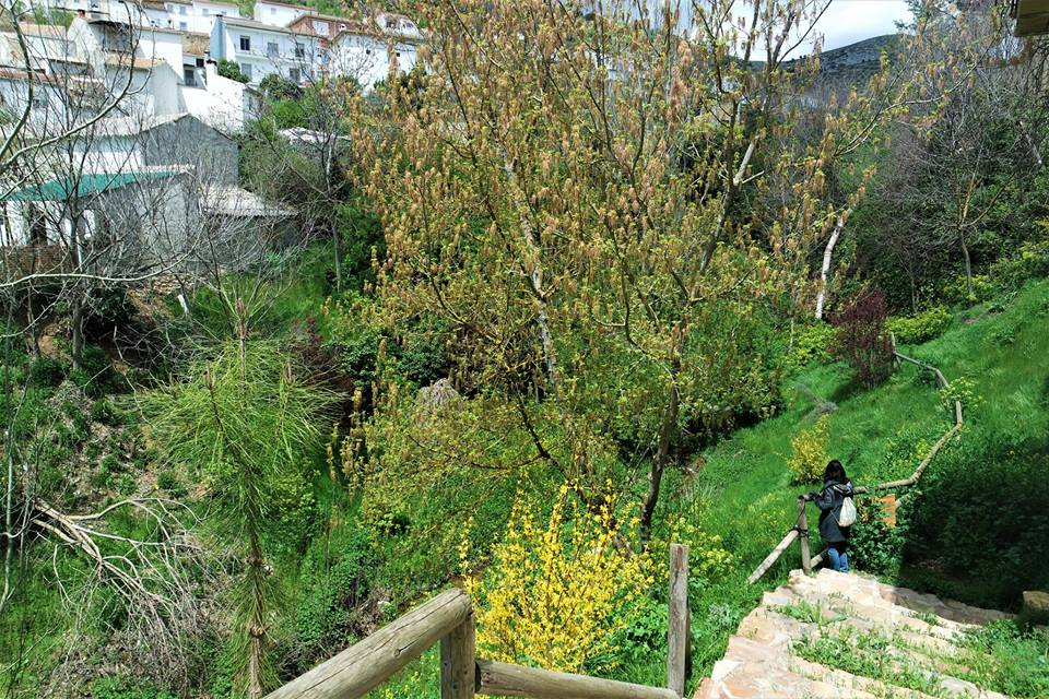 Naturaleza en la Sierra Sur de Jaén