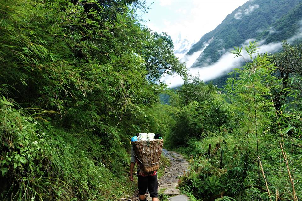 Porteadores camino del Campo Base del Annapurna