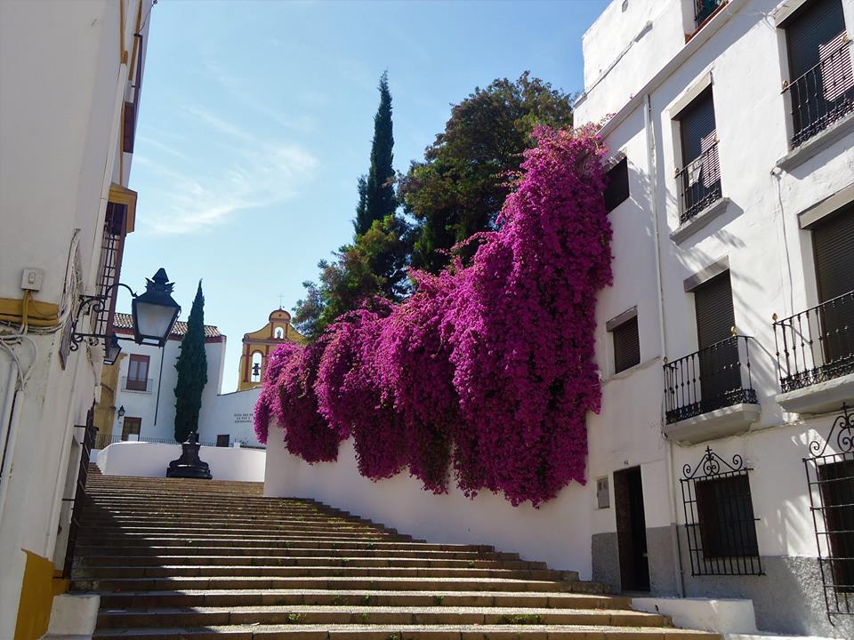 Escalinata que sube al Cristo de los Faroles