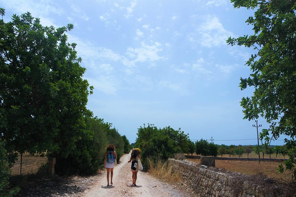 Camino de Cala Varqués, Mallorca