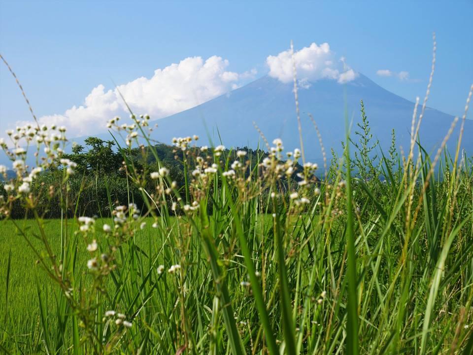 Monte Fuji desde Kawaguchiko
