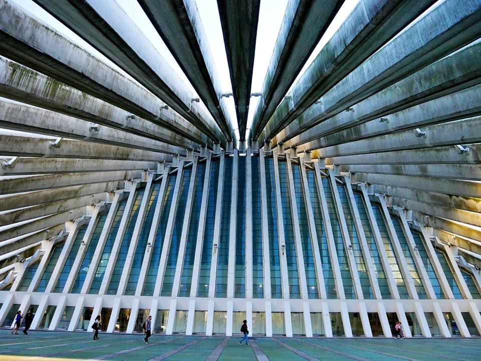 Auditorio de Calatrava