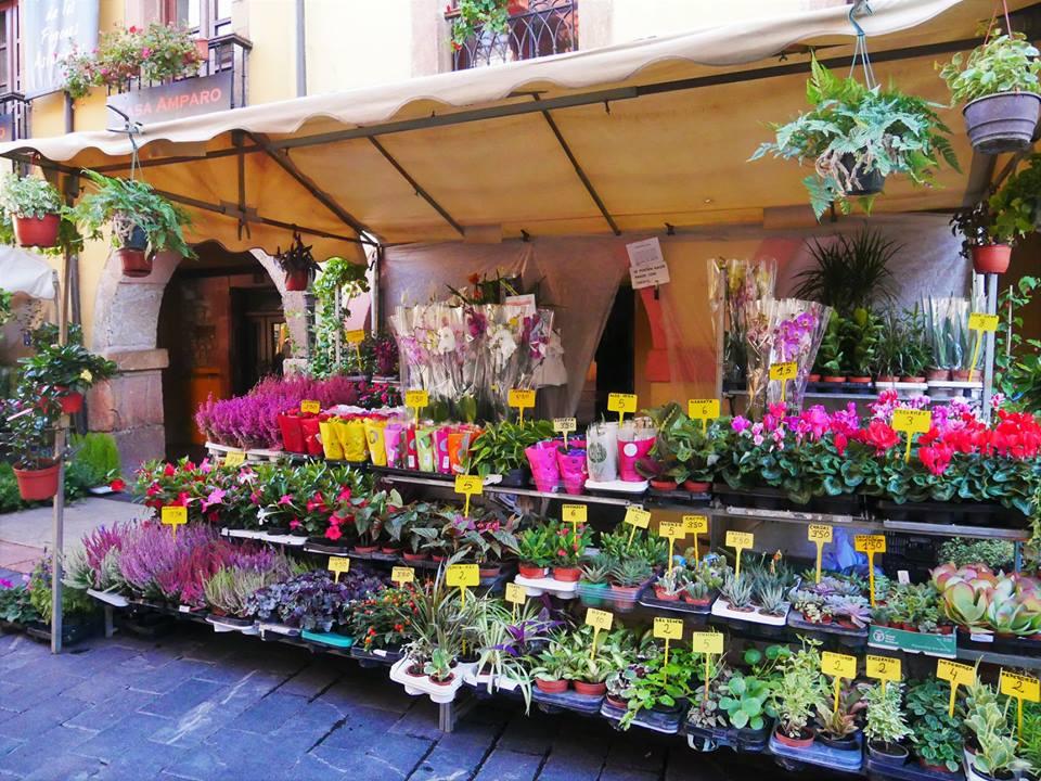 Mercado de flores, Oviedo