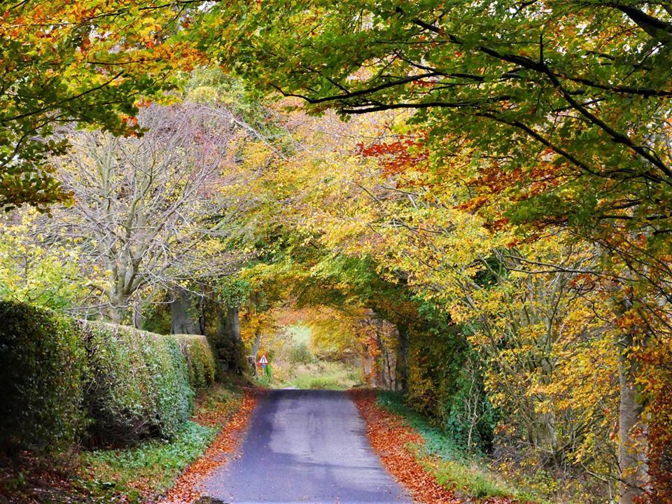 Carreteras de Escocia en otoño