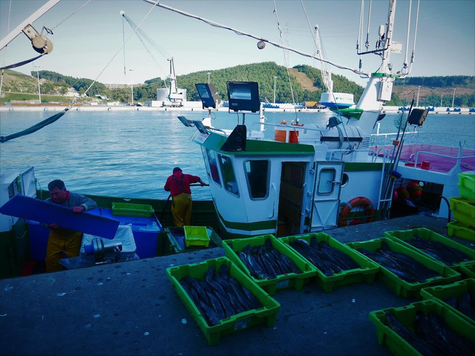 Pescadores faenando en el puerto de Avilés